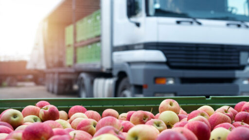 ERP Distribución Alimentación Galdón Software